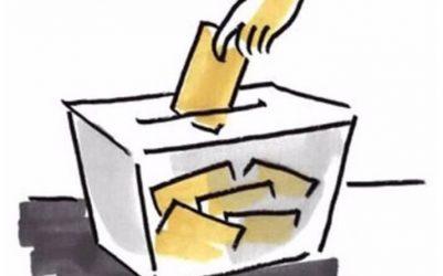 El Consejo Regulador de la DOP CANGAS convoca elecciones